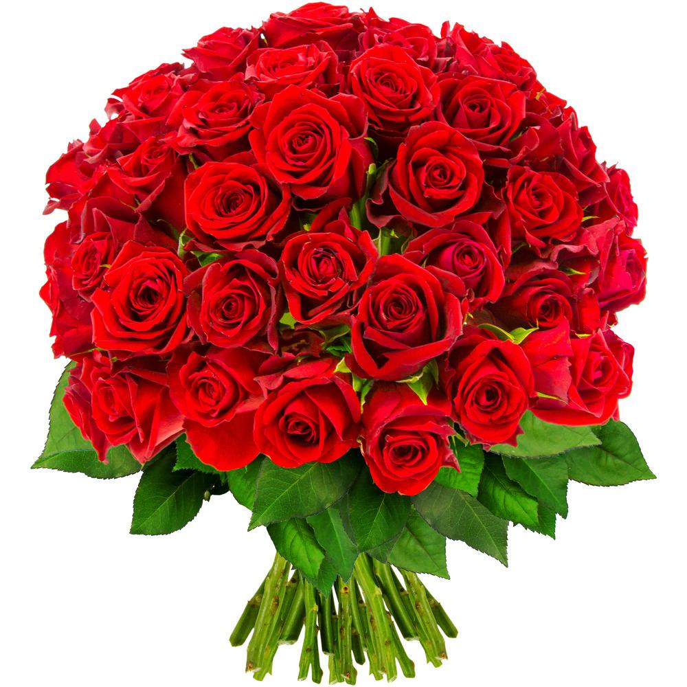 Bouquet de roses rouges - Vebaflor